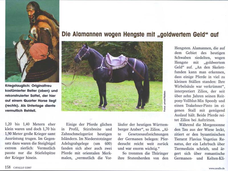 Cavallo Seite 5